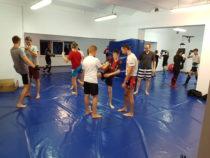 Nabór do grup początkujących MMA, BJJ i Tajski Boks trwa